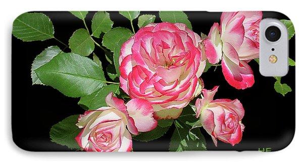 Four Roses Cutout IPhone Case by Shirley Heyn