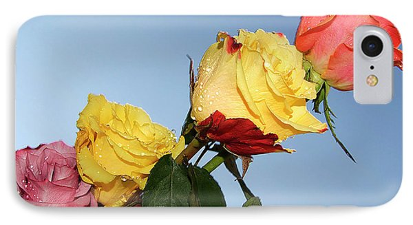 IPhone Case featuring the photograph Four Roses by Elvira Ladocki