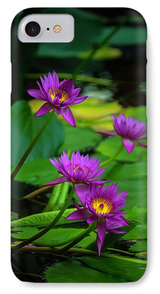 Four Waterlilies IPhone Case