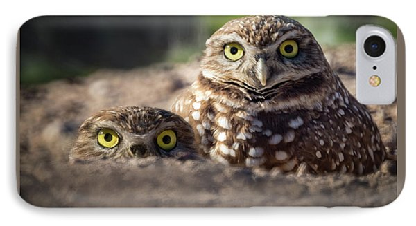 Four Yellow Eyes IPhone Case by A O Tucker