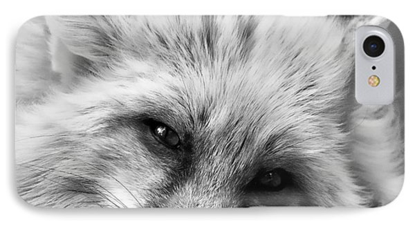 Fox Head Black And White Square Format IPhone Case by Laurinda Bowling