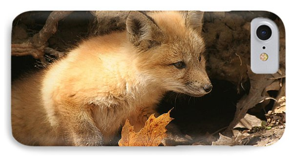 IPhone Case featuring the photograph Fox Kit At Entrance To Den by Doris Potter