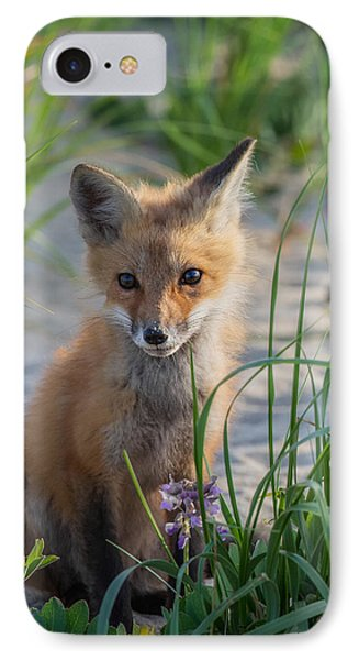 Fox Kit IPhone Case by Bill Wakeley