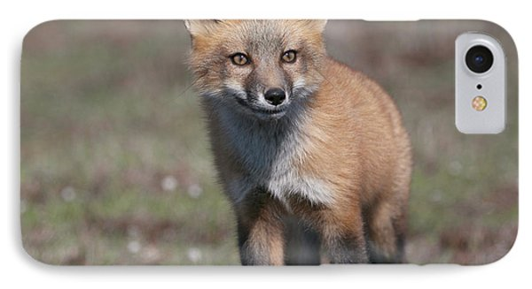 IPhone Case featuring the photograph Fox Kit by Elvira Butler