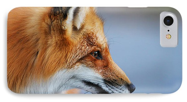 Fox Profile IPhone Case by Mircea Costina Photography