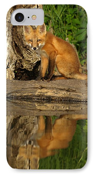 Fox Reflection IPhone Case by James Peterson