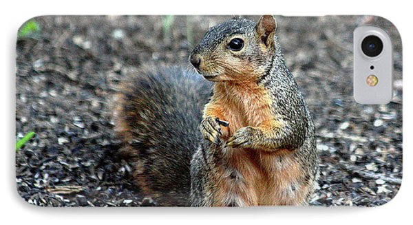 Fox Squirrel Breakfast IPhone Case by Sheila Brown