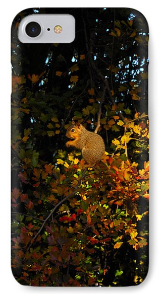 Fox Squirrel Phone Case by Noah Cole