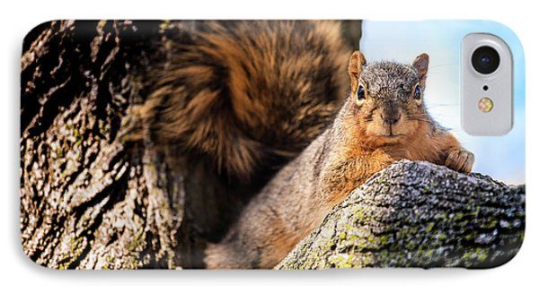 IPhone Case featuring the photograph Fox Squirrel Watching Me by Onyonet  Photo Studios