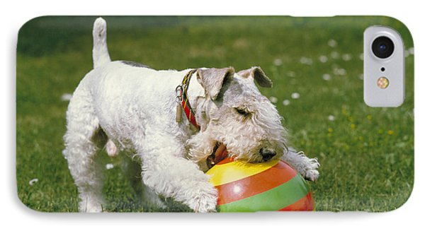 Fox Terrier With Ball IPhone Case