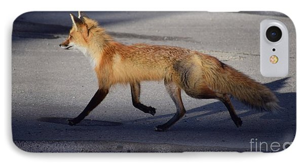 Fox Trot IPhone Case by Johanne Peale