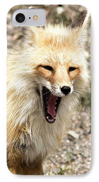 Fox Yawn IPhone Case