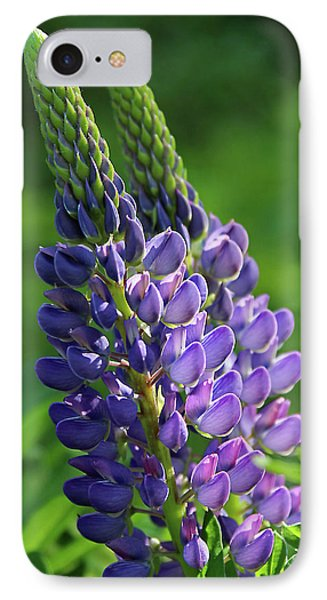 Lupin IPhone Case