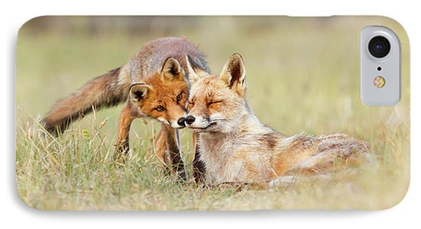 Foxy Love - Mother Fox And Fox Kit IPhone Case