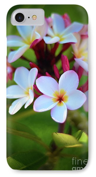 IPhone Case featuring the photograph Fragrant Sunset by Kelly Wade
