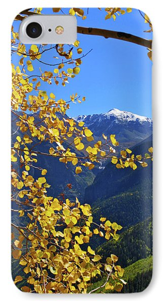 Framed By Fall Phone Case by Scott Mahon