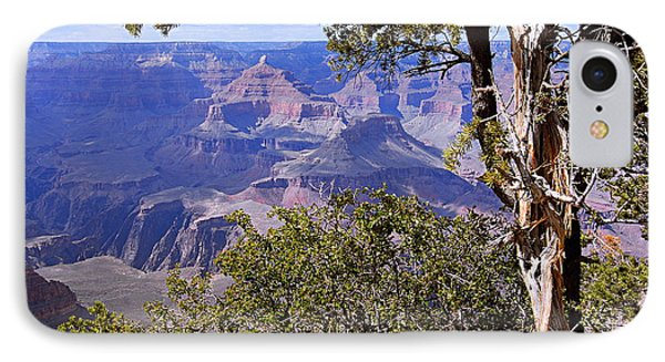 Framed View - Grand Canyon Phone Case by Larry Ricker