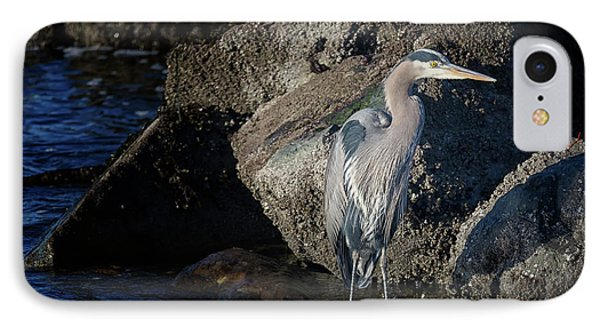 IPhone Case featuring the photograph French Creek Heron by Randy Hall