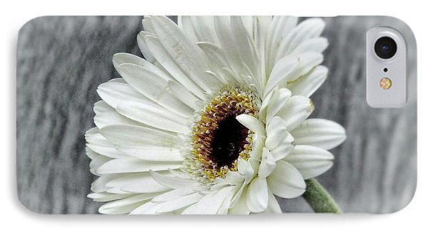 Fresh As A Daisy IPhone Case by Karen Stahlros