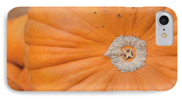 Fresh Organic Orange Giant Pumking Harvesting From Farm At Farme IPhone Case by Jingjits Photography