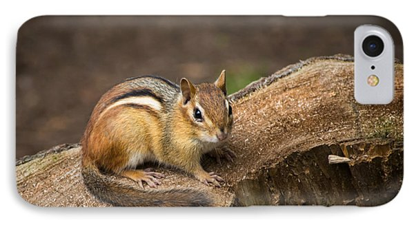IPhone Case featuring the photograph Friendly Chipmunk by Paul Miller