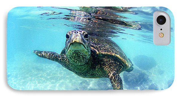 friendly Hawaiian sea turtle  Phone Case by Sean Davey