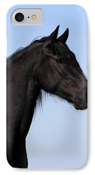 Friesian Stallion IPhone Case by Michael Mogensen