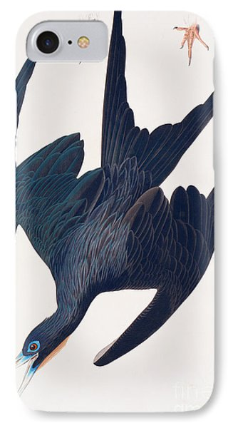 Frigate Penguin IPhone Case by John James Audubon