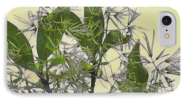 Fringe Tree IPhone Case by David Klaboe