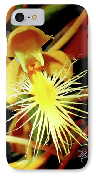 IPhone Case featuring the photograph Fringed Yellow Orchid by Meta Gatschenberger