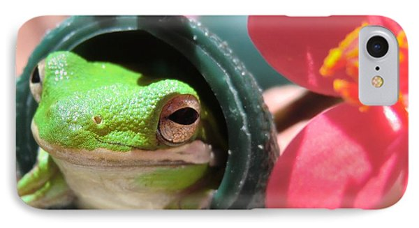 Frog At Selby Phone Case by Michele Penn