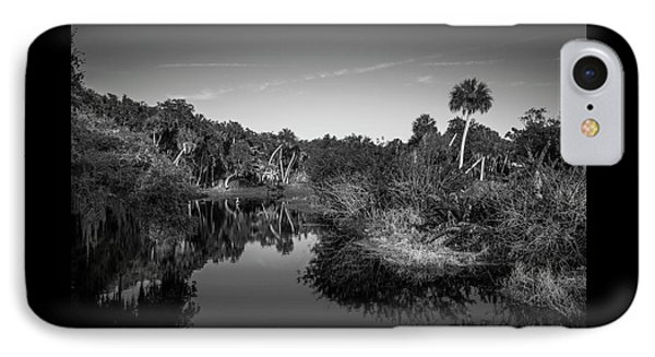 Frog Creek 2 IPhone Case