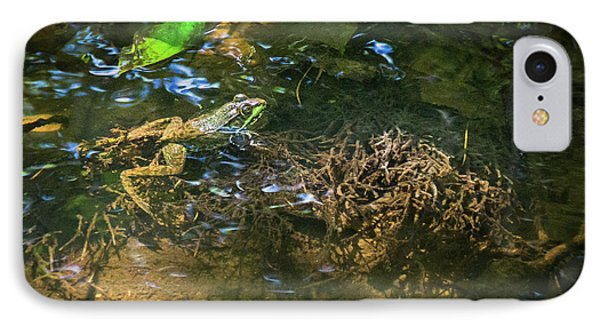 IPhone Case featuring the photograph Frog Days Of Summer by Bill Pevlor