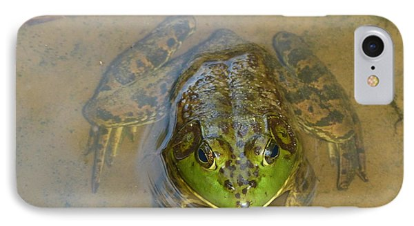 IPhone Case featuring the photograph Frog Of Lake Redman by Donald C Morgan