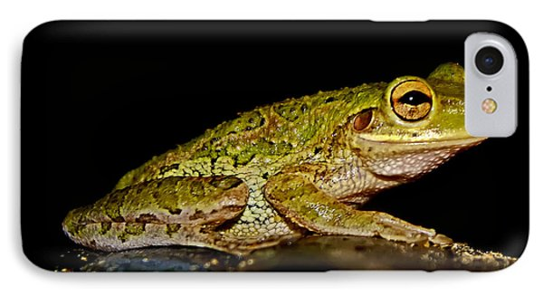 IPhone Case featuring the photograph Cuban Tree Frog by Olga Hamilton