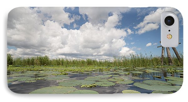 From A Frog's Point Of View - Lake Okeechobee IPhone Case by Christopher L Thomley
