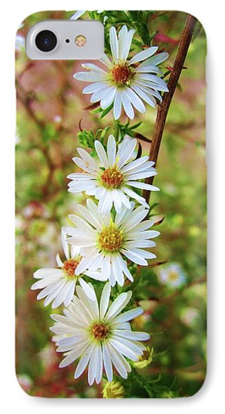 Frost Aster IPhone Case by Mary Ellen Frazee