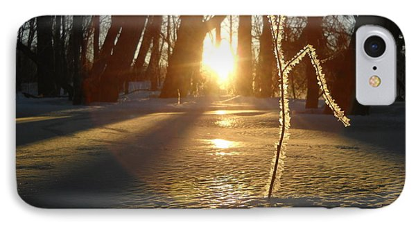 Frost On Sapling At Sunrise IPhone Case