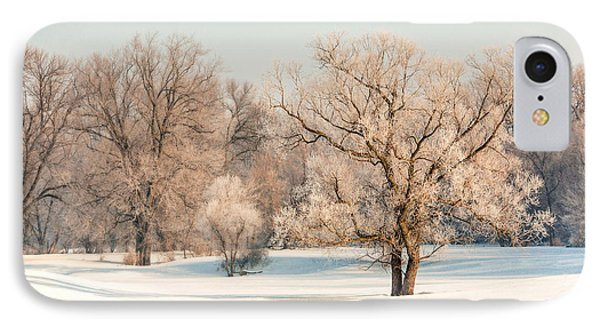 Frosty Forest IPhone Case by Todd Klassy