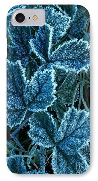 Frosty Ivy IPhone Case