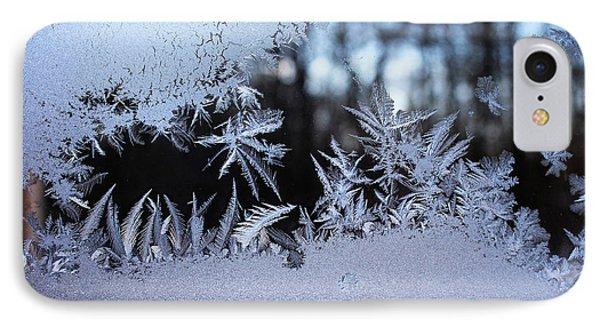 Frosty Morning Window Phone Case by Liz Allyn