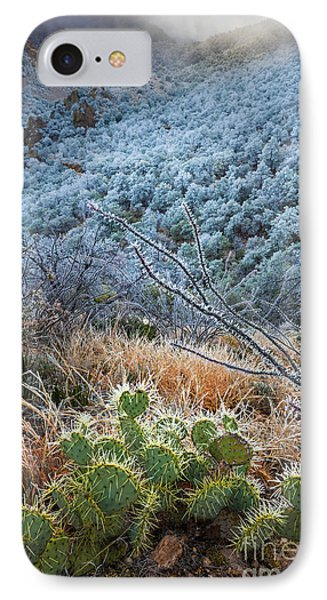 Frosty Prickly Pear IPhone Case by Inge Johnsson