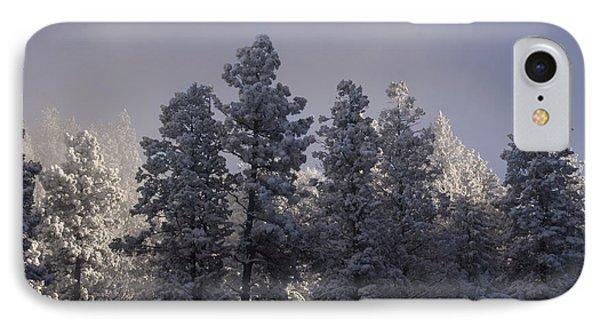 IPhone Case featuring the photograph Frozen by Ellen Heaverlo