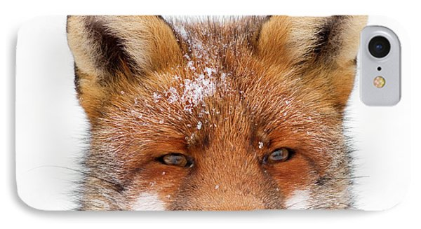Frozen Fox IPhone Case by Roeselien Raimond