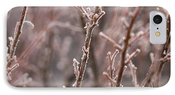 IPhone Case featuring the photograph Frozen Garden by Ana V Ramirez