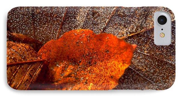 Frozen Leaf IPhone Case by Michael Mogensen