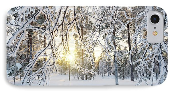IPhone Case featuring the photograph Frozen Trees by Delphimages Photo Creations