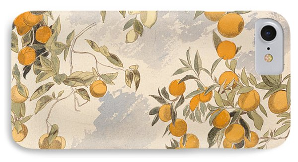 Fruit Trees, 3 April 1863 IPhone Case by Edward Lear
