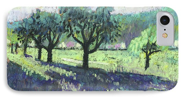 Fruit Trees, Spring Landscape IPhone Case by Martin Stankewitz