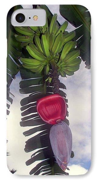 Fruitful Beauty IPhone 7 Case by Karen Wiles